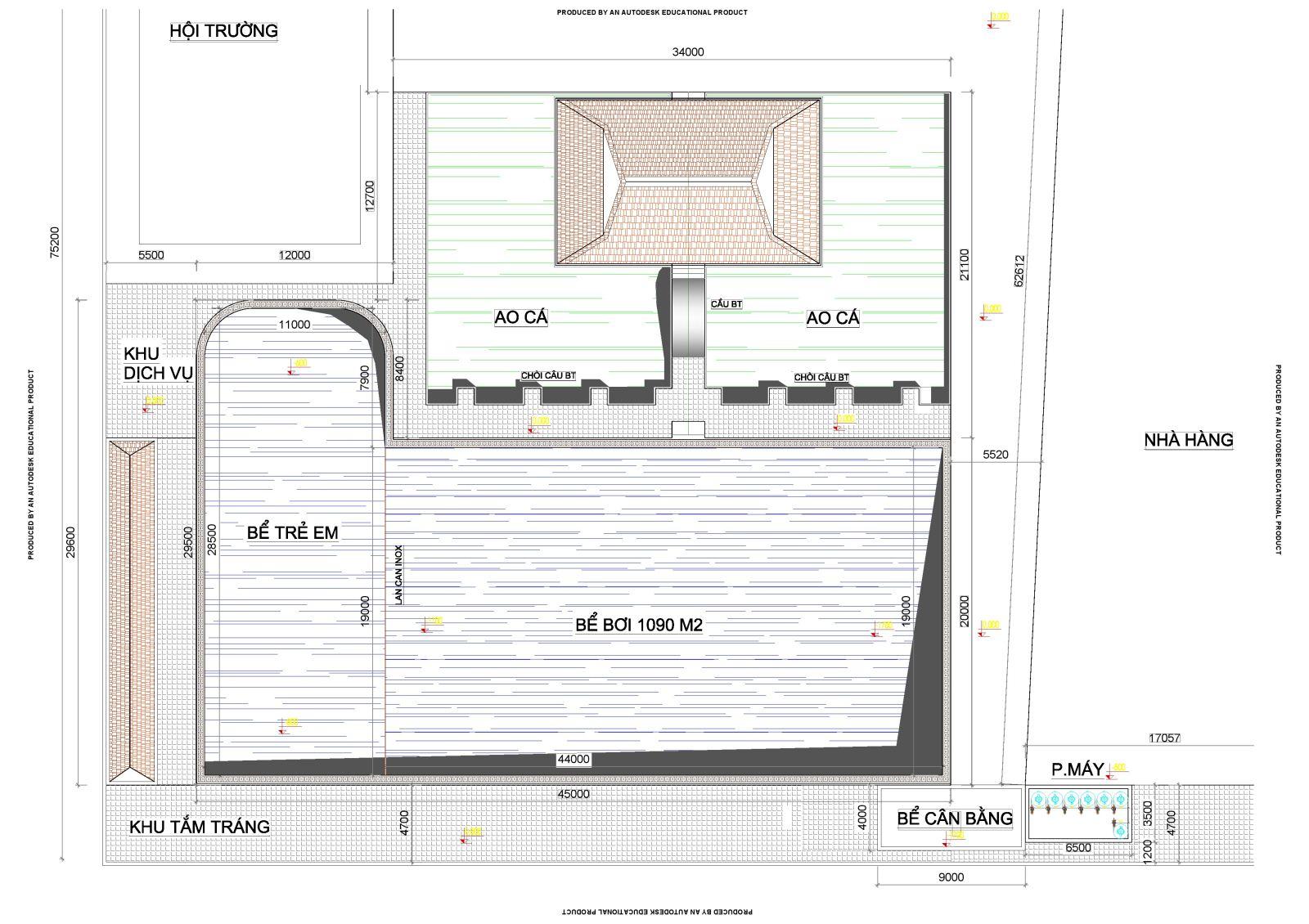 Thiết kế bể bơi kinh doanh trong khu tổ hợp kinh doanh