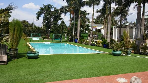 Trang trí bể bơi ngoài trời với thảm cỏ nhân tạo